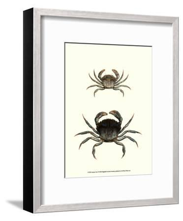 Antique Crab I-James Sowerby-Framed Art Print