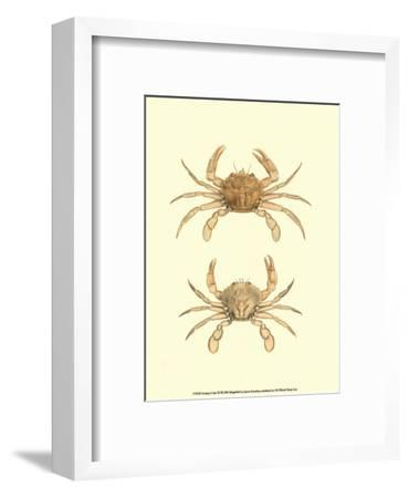 Antique Crab III-James Sowerby-Framed Art Print