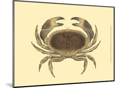 Antique Crab IV-James Sowerby-Mounted Art Print