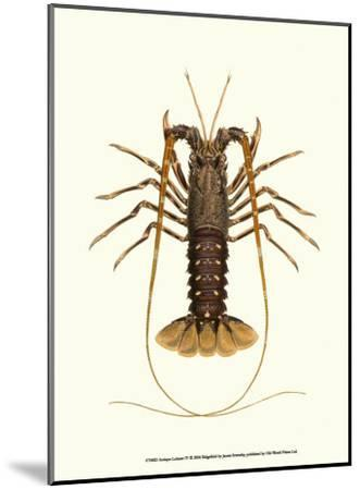 Antique Lobster IV-James Sowerby-Mounted Art Print
