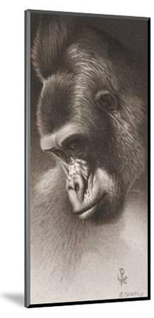 Silver Back, the Gorilla-Robert L^ Caldwell-Mounted Art Print
