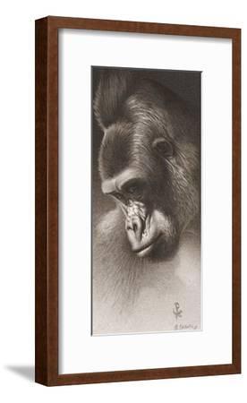 Silver Back, the Gorilla-Robert L^ Caldwell-Framed Art Print
