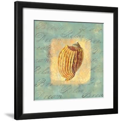 Spa Sea Shell I--Framed Giclee Print