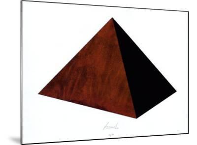 Pyramide Rost Schwarz-Juergen Freund-Mounted Limited Edition