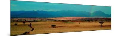 Namib Rand - Namibia-Paul Franklin-Mounted Art Print