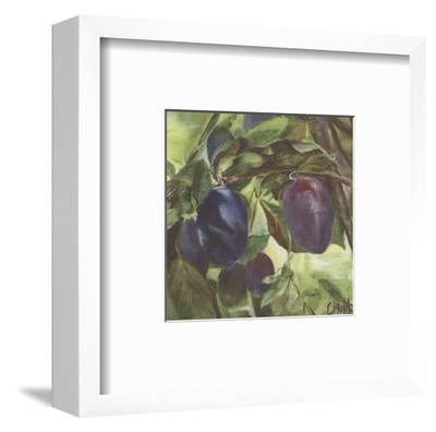 Prunes-Clauva-Framed Art Print