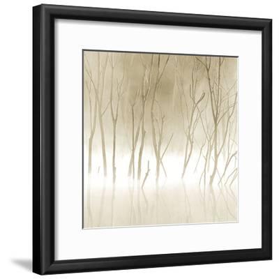 Soft Light II-Adam Brock-Framed Art Print