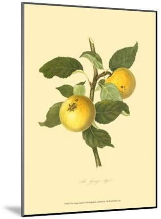 The Grange Apple--Mounted Art Print