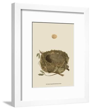 Antique Nest and Egg I-Reverend Francis O^ Morris-Framed Art Print