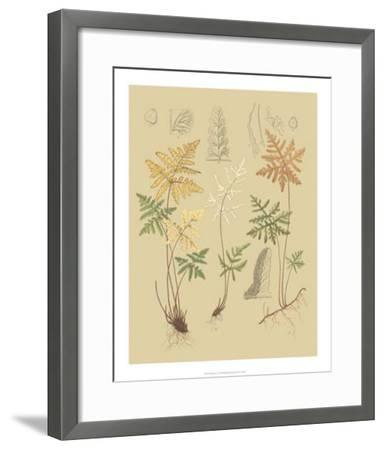 Nature's Lace I-C^e^ Faxon-Framed Giclee Print