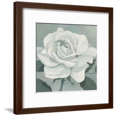 White Rose-Franz Heigl-Framed Art Print
