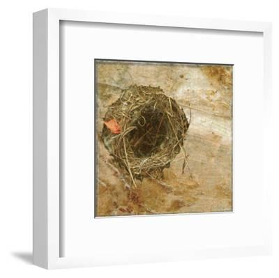 Nest Red Leaf-Susan Friedman-Framed Art Print