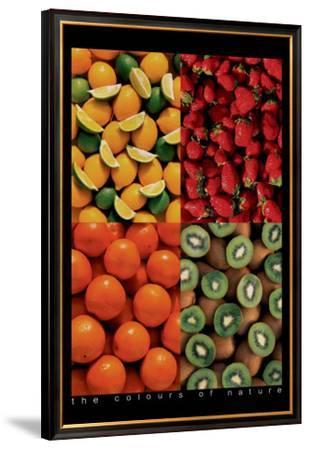Fruits--Framed Premium Giclee Print