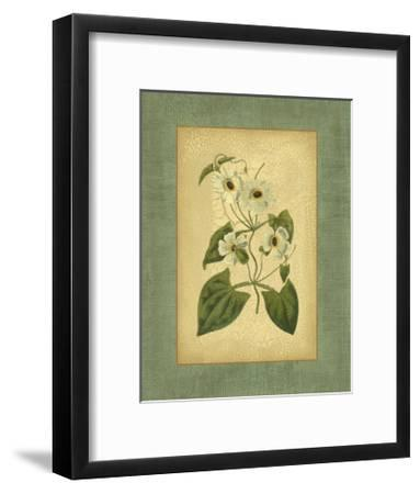 Spa Blue Curtis III-Samuel Curtis-Framed Art Print