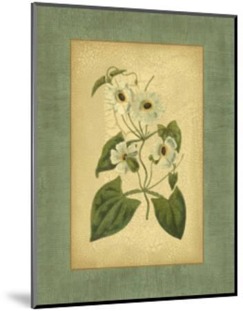 Spa Blue Curtis III-Samuel Curtis-Mounted Art Print