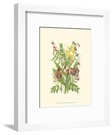 Summer Garden IX-Anne Pratt-Framed Art Print