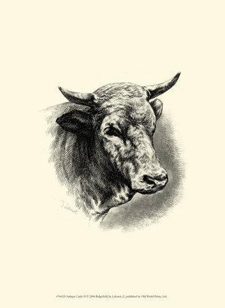 Antique Cattle II-F^ Lehnert-Framed Art Print