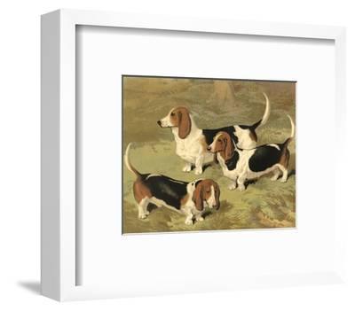 Basset Hounds-Vero Shaw-Framed Art Print