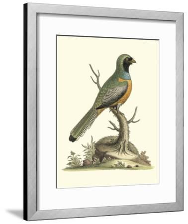 Poised in Nature I-George Edwards-Framed Giclee Print
