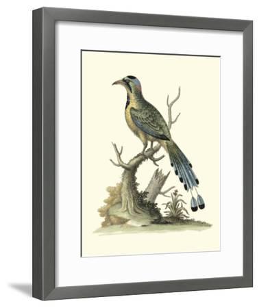 Poised in Nature II-George Edwards-Framed Giclee Print