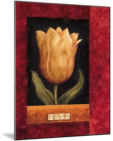 Orange Tulip-Herve Libaud-Mounted Art Print