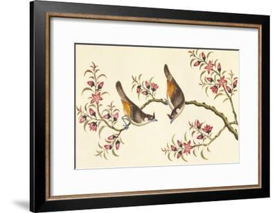 Birds And Flowers On Branch--Framed Premium Giclee Print