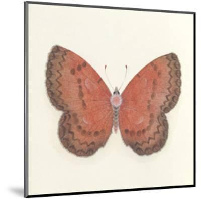 Butterfly I-Sophie Golaz-Mounted Premium Giclee Print