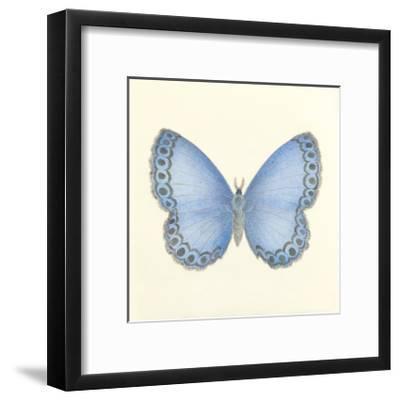Butterfly IV-Sophie Golaz-Framed Premium Giclee Print