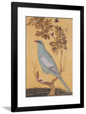 Resplendant--Framed Premium Giclee Print