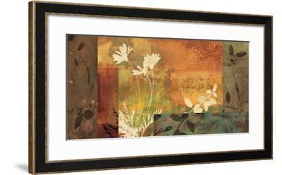 Shambala I-Chris Donovan-Framed Art Print