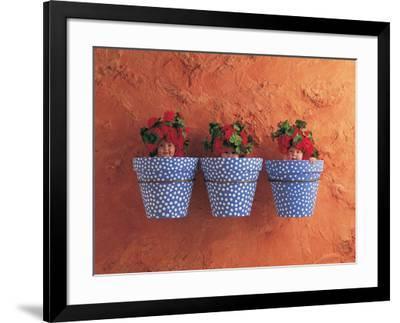 Mediterranean Pots-Anne Geddes-Framed Art Print