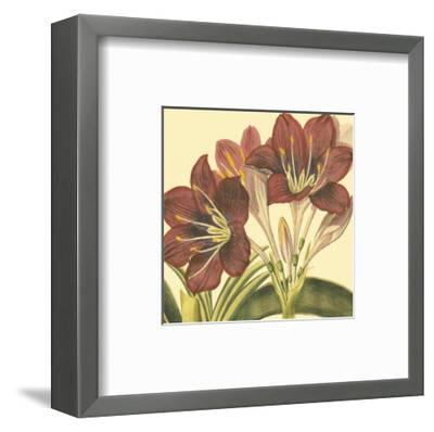 Poetic Blossoms I--Framed Art Print