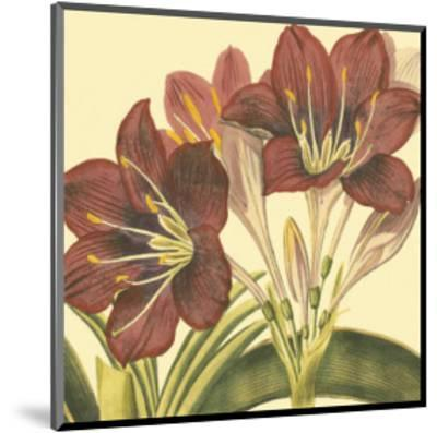 Poetic Blossoms I--Mounted Art Print