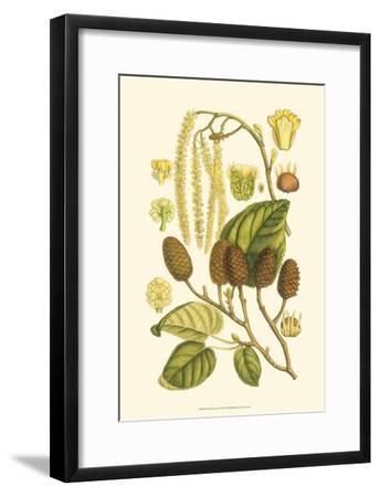 Natural Harvest I-Samuel Curtis-Framed Art Print