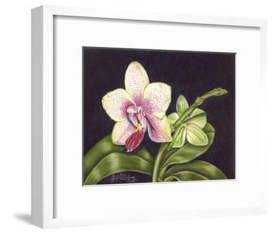 Vibrant Orchid II-Gloria J^ Callahan-Framed Art Print