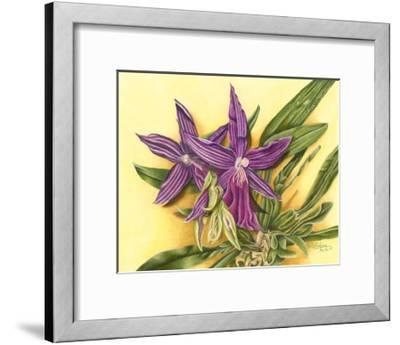Vibrant Orchid IV-Gloria J^ Callahan-Framed Art Print