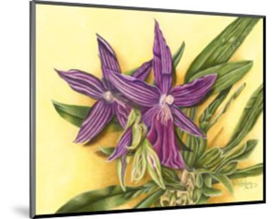 Vibrant Orchid IV-Gloria J^ Callahan-Mounted Art Print