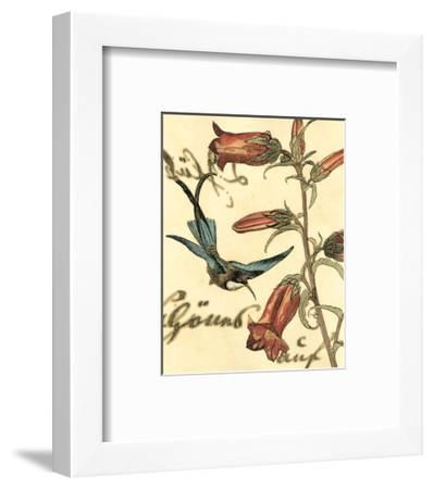 Hummingbird Reverie I--Framed Art Print