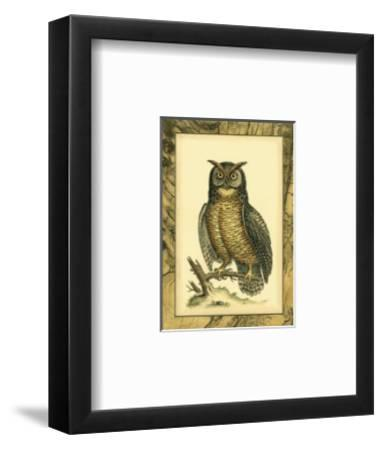 Majestic Perch II--Framed Art Print