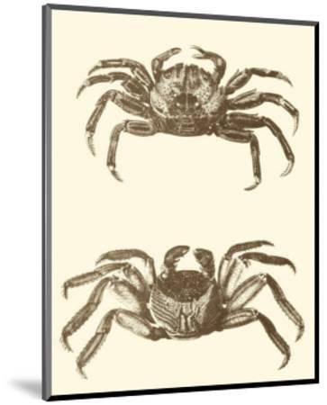 Sepia Crabs II--Mounted Art Print