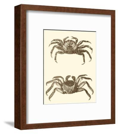 Sepia Crabs II--Framed Art Print