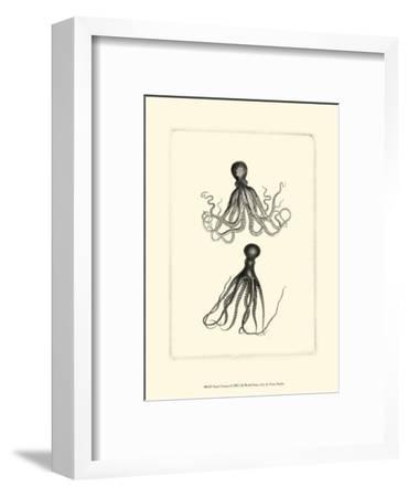 Sepia Octopus--Framed Art Print