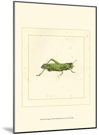 Green Hopper--Mounted Art Print
