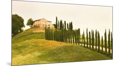 Tuscan Hills-Jim Chamberlain-Mounted Art Print