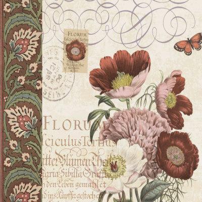 Floral Collage II-Paula Scaletta-Framed Art Print