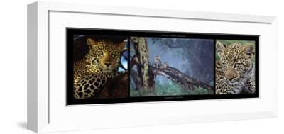 Leopards in Nakuru-Michel & Christine Denis-Huot-Framed Art Print