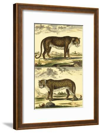 Panther and Leopard-Denis Diderot-Framed Art Print
