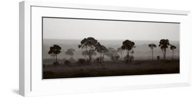 Tree Line-Jorge Llovet-Framed Art Print