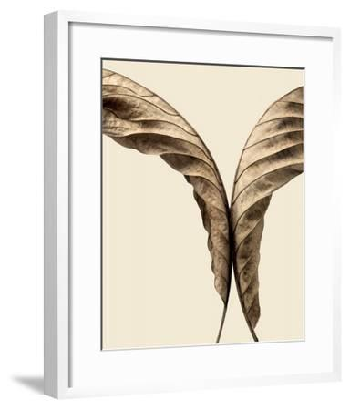 Turning Leaves II-Jeff Friesen-Framed Art Print