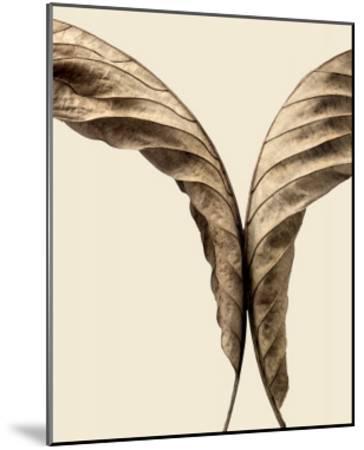 Turning Leaves II-Jeff Friesen-Mounted Art Print